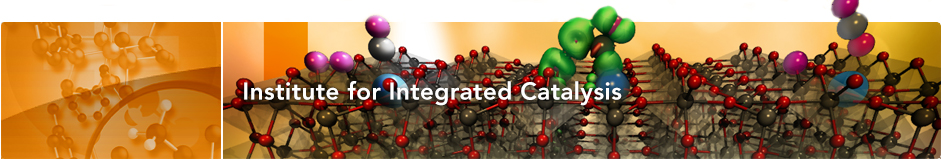 Institute for Integrated Catalysis